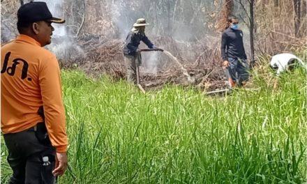 ไฟไหม้ป่าพรุ เสียหาย 2, 455ไร่ เร่งสร้างกันแนวกันไฟป่าป้องกันป่าสมบูรณ์
