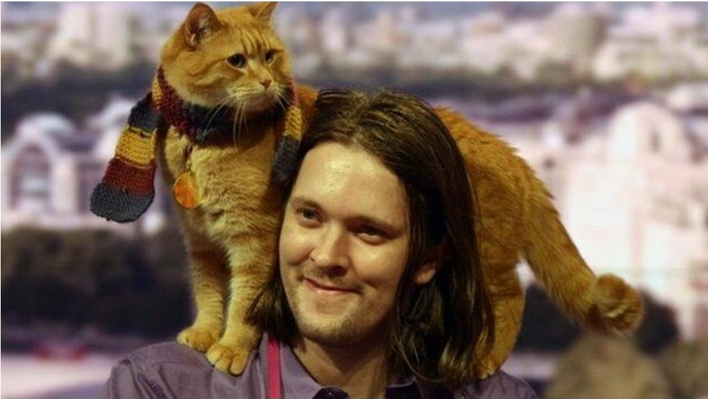 A Street Cat Named Bob : การจากไปของแมวจรจัดที่เป็นแรงบันดาลใจให้หนุ่มติดยาคนหนึ่งเขียนหนังสือถึง 6 เล่ม