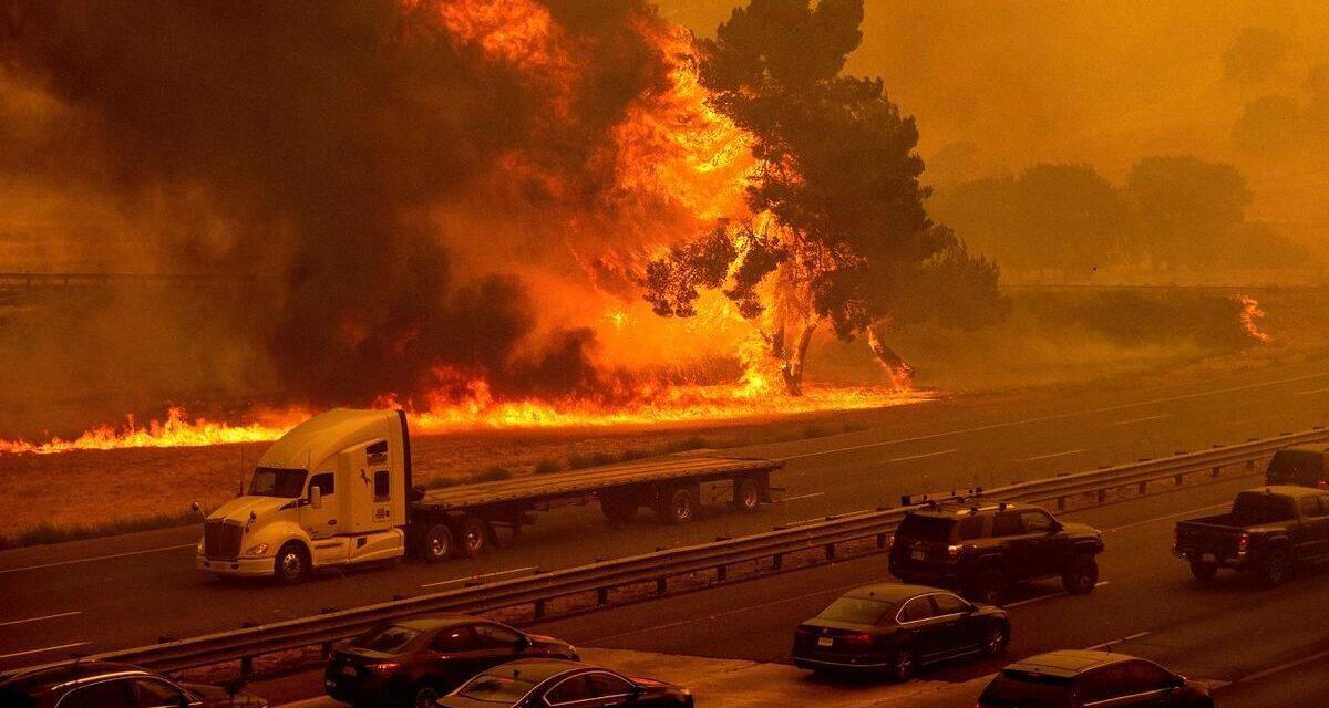 ไฟป่าแคลิฟอร์เนียที่ใหญ่ที่สุดกำลังคุกคามพื้นที่ปลูกกัญชา