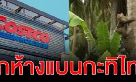 ค้าปลีกยักษ์ใหญ่รายล่าสุดในสหรัฐ คอสต์โก ประกาศจะไม่ซื้อกะทิแบรนด์ไทยอย่างชาวเกาะ