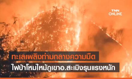 ไฟป่าโหมไหม้ภูเขาอ.สะเมิงจ.เชียงใหม่รุนแรง กลายเป็นทะเลเพลิงท่ามกลางความมืด