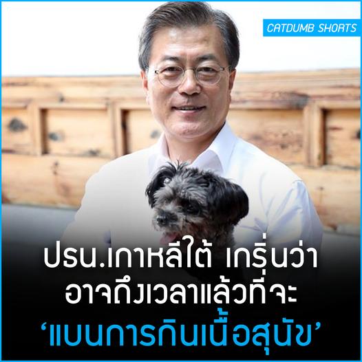 """ประธานาธิบดีเกาหลีใต้ยกคำสั่งห้ามกินเนื้อสุนัข: """"ยังไม่ถึงเวลาหรือ?"""""""